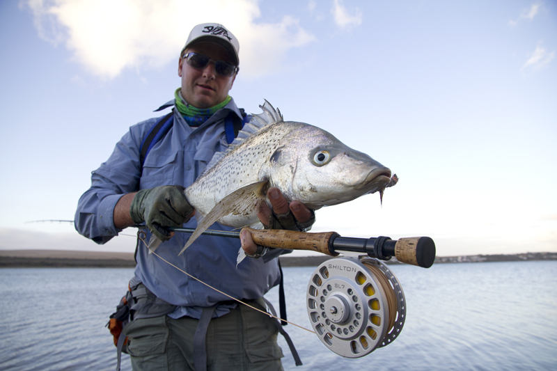 Billy De Jong is the lucky chap that caught this beautiful spotted grunter on a Shilton SL7 reel