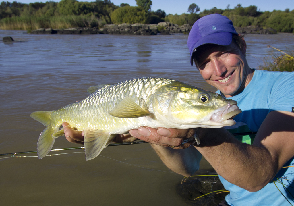 An 'average' largemouth caught Czech nymphing on a brief previous visit to the Orange River in the Colesburg area.