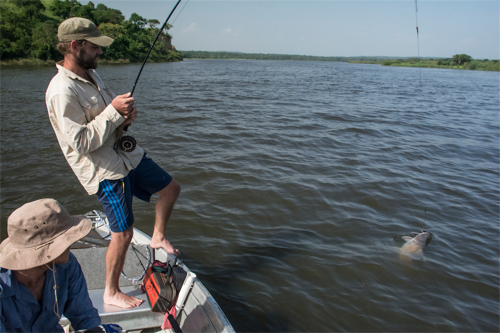 murchison_perch_tigerfish_camping-018
